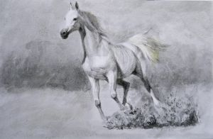 Horse ( I ) by 66and00