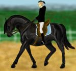 Training by Golden-Horse-Stables