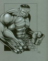 Gray Hulk by seanforney