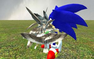 Sonic attacked by seagulls by Kafei79