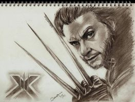 Wolverine by 170383