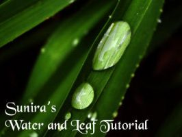 Leaf and Water Tutorial by Sunira