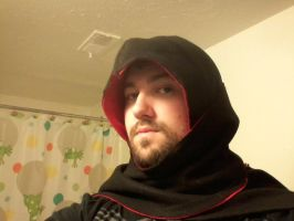 assassins creed hooded scarf by TheLittleRaven