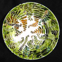 Fern plate two by astis