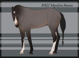 BRlS Myrofora Aurora by BRls-love-is-MY-Live