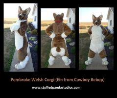 Ein the Pembroke Welsh Corgi by stuffedpanda-cosplay