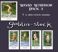 Woad Warrior Pack 2 by GoblinStock