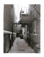 The Alley by DayDreamsPhotography