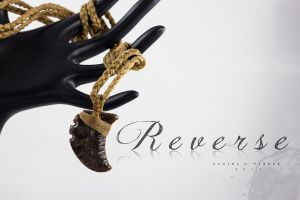 Reverse by DanielAPierce