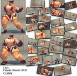 USF4 Muscle mod CAMMY by morugen