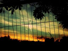 the fence sunset by sophhks