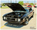 A Black Mustang Convertible by TheMan268