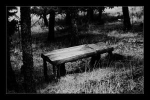 The Bench by chromosphere