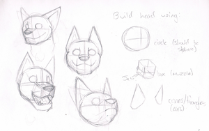 A sort-of tutorial on canine heads by Racesolar