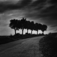 -Six brave ones- by Janek-Sedlar