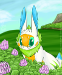 Exploring the Clover Fields by Uluri