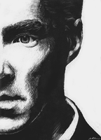 Benedict Cumberbatch - Scratchboard by sugarpoultry