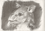 Tapir?  I hardly know 'er! by Obsequiosity