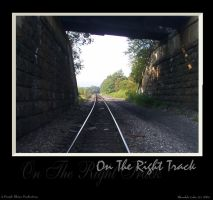 On The Right Track by purplerhino