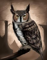 Great Horned Owl by Metalbolic