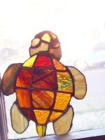 This is my turtle, his name is Rodger by kirei0