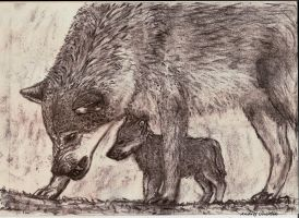 Wolf - family guardian drawing by AndynoSK
