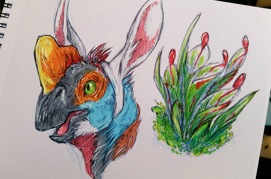 Sketchbook doodles by IndiWolfOnline