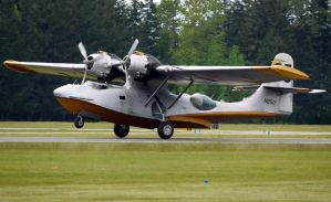 Consolidated PBY Landing by shelbs2