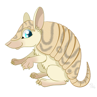 Armadillo by SwanLullaby