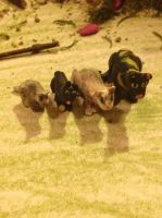 Other Clay Cat Family by KatnipKat