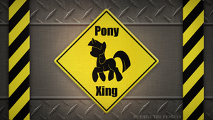 WARNING: Pony Xing by OEmilyThePenguinO