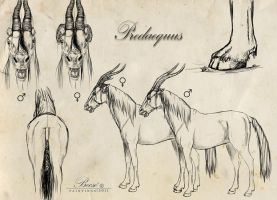 Predaequus II. by Becso-dimension