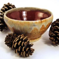 Red and Sandstone Bowl by bugsandbears