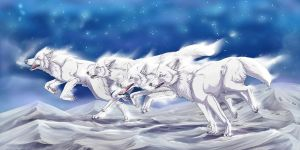 Snow wolves by HauRin
