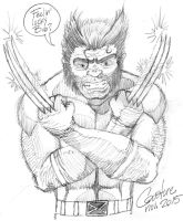 Wolverine by Cousture