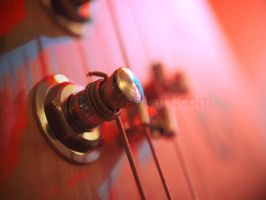 Tuning pegs by Krzik