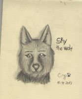 Looking at you - Sky the wolf again :3 by CrazyJefffersonian