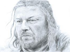 Lord Eddard Stark by Polaris279