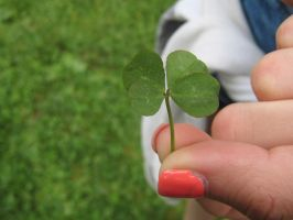 fourleaved clover by Roosier