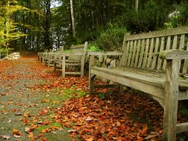 bench 05 by Pagan-Stock
