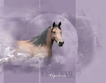 Lequime layout by Pure-blue