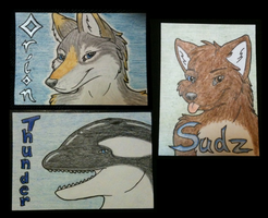 Conbadge - Collection 4 by Eluned