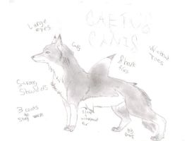 Caetus Canis by AnimeWolveslover