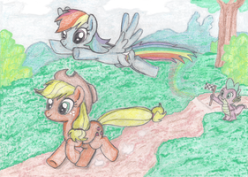 Appledash race by Fluttershy626