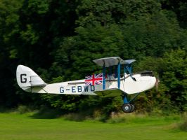 DH X60 July Old Warden by davepphotographer