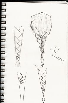 Braid Practice 1 by icedragon248