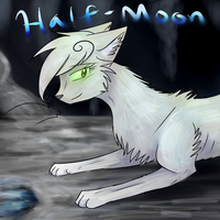 Halfmoon by Diamondfeathers