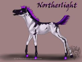 Ghost x Northern - Northerligh by FlareAndIcicle