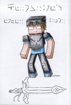 The Enderarmor by owlmaddie