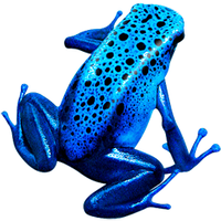 Azureus Replacement Icon by ydsog